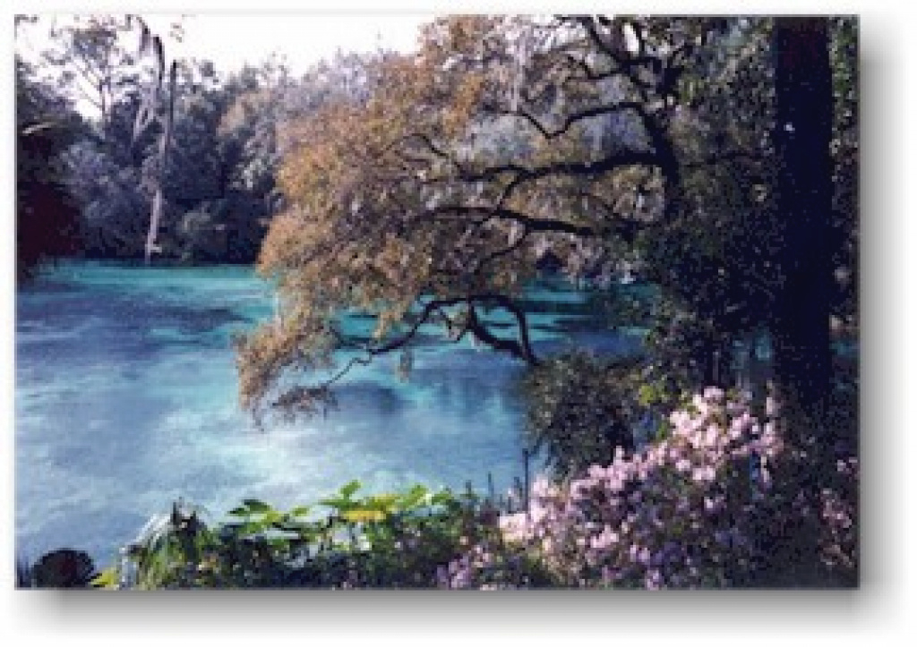 Activities At Rainbow Springs State Park And The Rainbow River pertaining to Rainbow Springs State Park Campground Map