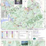 Allegany State Park Visitors Map | Enchanted Mountains Of With State Park Map