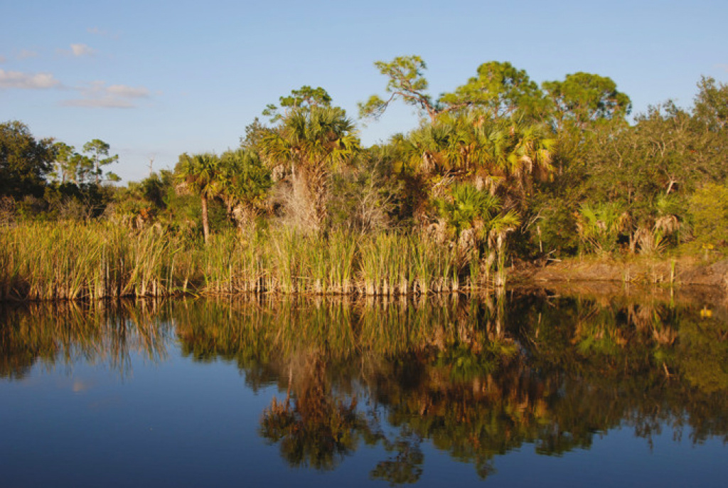 Alligator Creek | Florida Hikes! pertaining to Charlotte Harbor Preserve State Park Trail Map