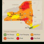 Beautiful Peak And Near Peak Fall Colors Starting To Appear Across In New York State Foliage Map