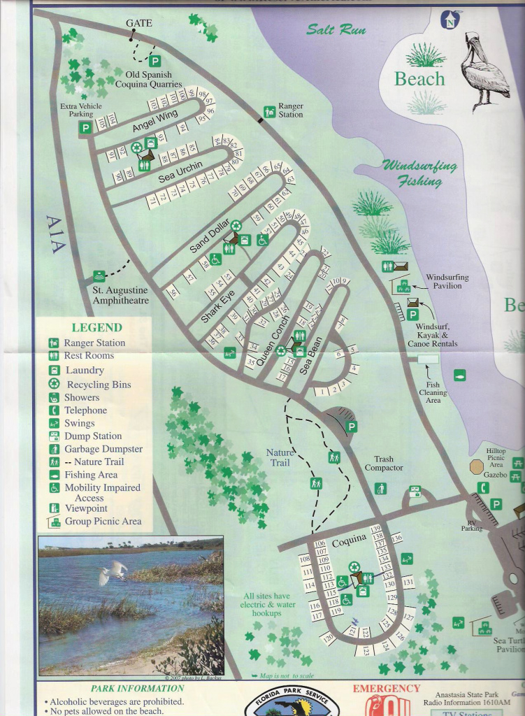 Campground Map - Anastasia State Park - St. Augustine - Florida throughout Florida State Parks Camping Map