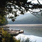Campgrounds And Camping Reservations   Pennsylvania State Parks In Pennsylvania State Parks Camping Map