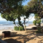 Carpinteria: A State Beach That Is Ideal All Year Round In Carpinteria State Beach Campground Map