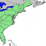 East Coast Of The United States   Wikipedia With Regard To East Coast States Map