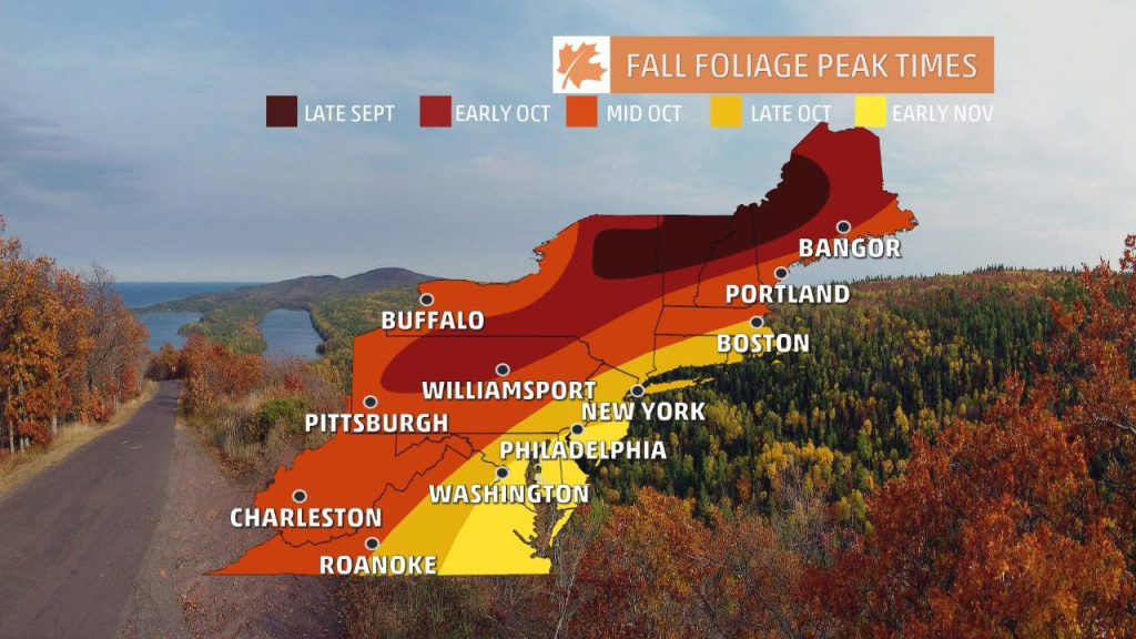 Fall Foliage Finder - Following Fall inside New York State Foliage Map