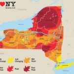 Fall Foliage In New York | Autumn Leaves, Scenic Drives With Regard To New York State Foliage Map