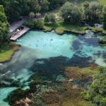 Florida Springs, Springs In Florida, Florida Cave Diving, Manatee With Rainbow Springs State Park Campground Map