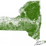 Forests   Nys Dept. Of Environmental Conservation Intended For New York State Forests Map