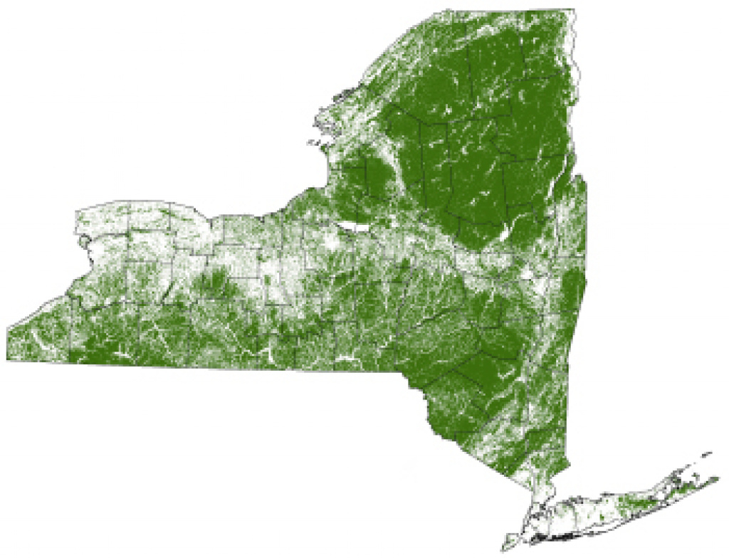 Forests - Nys Dept. Of Environmental Conservation intended for New York State Forests Map