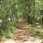 Hike Huntsville State Park   Get Out Here Houston Gulf Coast With Huntsville State Park Trail Map