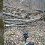 Kanawha State Forest?  Mtbr Throughout Kanawha State Forest Hunting Map