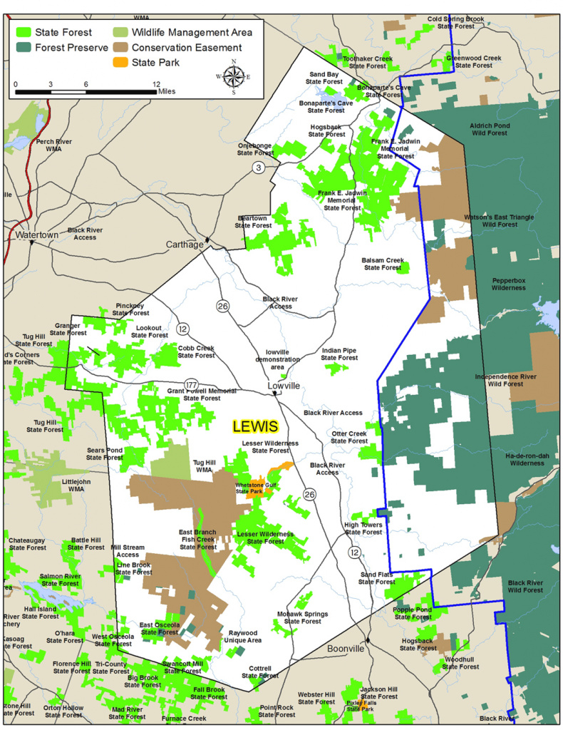 Lewis County Map - Nys Dept. Of Environmental Conservation for New York State Forests Map