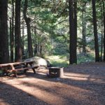 Limekiln State Park Campground   Monterey County In Limekiln State Park Campground Map