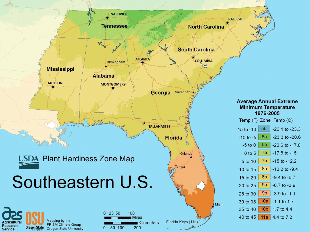 Map Of South East Region Of Us Blank Us Map Southeast Region for Map Of The Southeast Region Of The United States