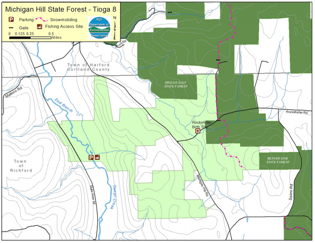 Michigan Hill State Forest Map - Nys Dept. Of Environmental Conservation for Michigan State Forest Map