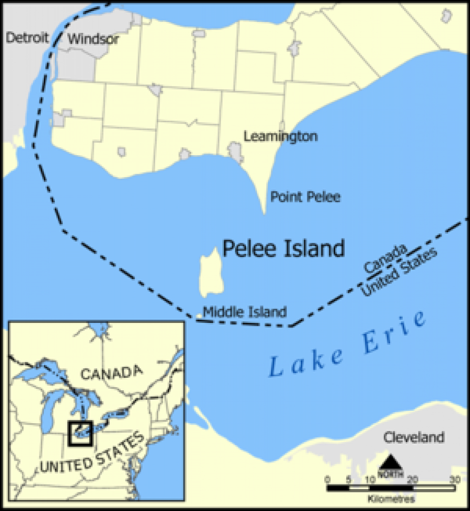 Middle Island (Lake Erie) - Wikipedia throughout Map Lake Erie Surrounding States