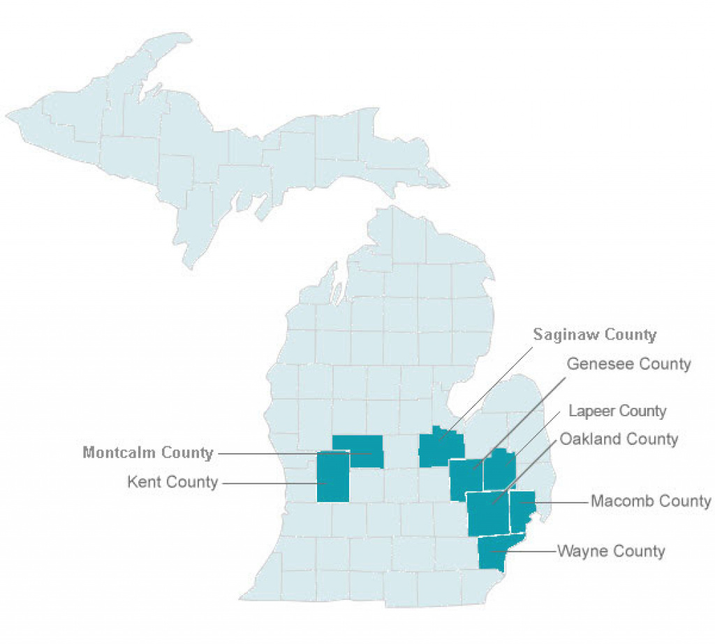 Molina Medicare Service Map In The State Of Michigan inside Maps State Of Michigan Prescription