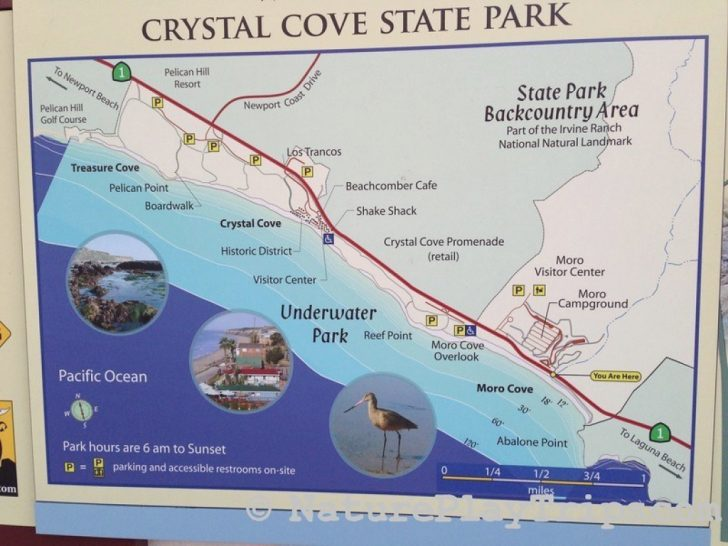 Crystal Cove State Beach Map