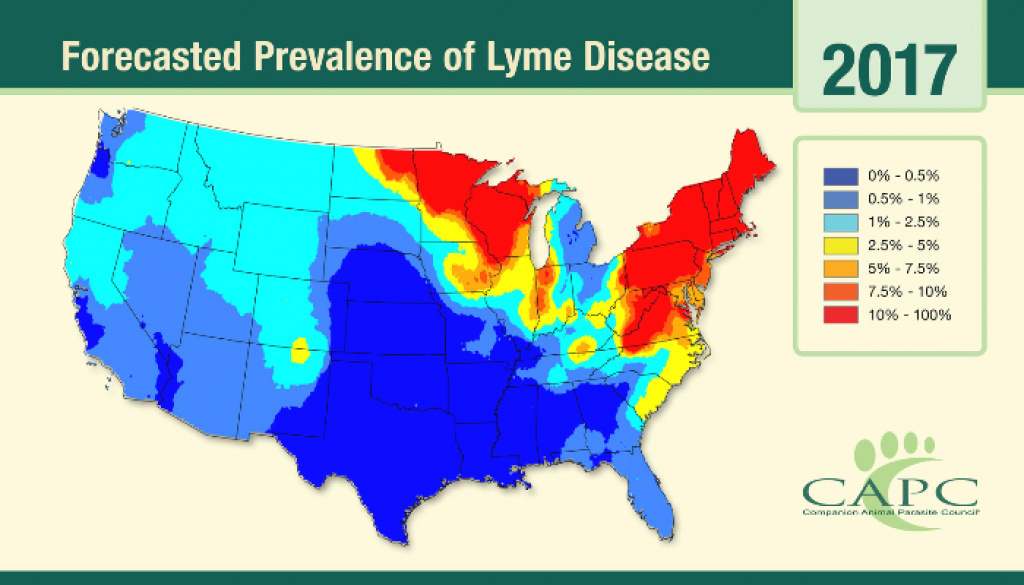 New Map Shows Where Dogs Are Most Likely To Get Lyme Disease with Lyme Disease By State Map