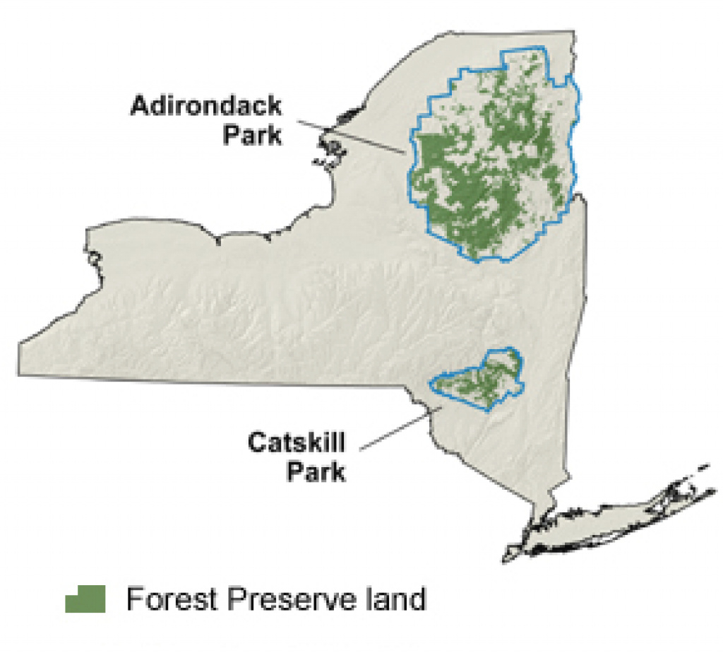 New York's Forest Preserve - Nys Dept. Of Environmental Conservation throughout New York State Forests Map