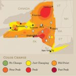 Ny Fall Foliage: Peak Colors In Much Of Upstate This Weekend (Oct. 9 With New York State Foliage Map
