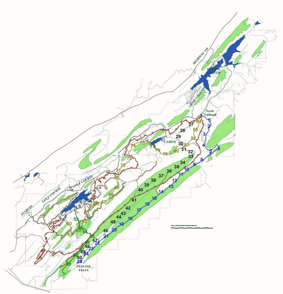 Oak Mountain State Park intended for Oak Mountain State Park Trail Map
