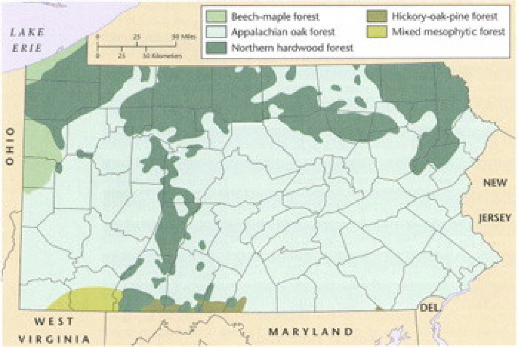 Pa Dcnr - Plant Communities with regard to Pa State Forest Maps
