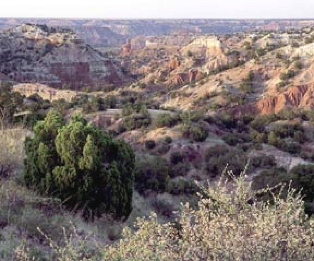 Palo Duro Canyon State Park regarding Palo Duro Canyon State Park Trail Map