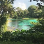 Rainbow Springs State Park   Updated 2018 Campground Reviews In Rainbow Springs State Park Campground Map