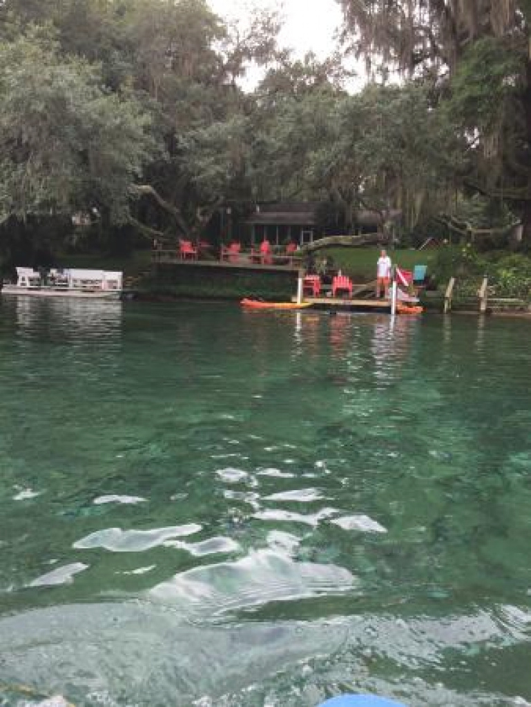 Rainbow Springs State Park - Updated 2018 Campground Reviews inside Rainbow Springs State Park Campground Map