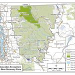 Reading The Washington Landscape: North Cascades And Grizzly Bears With Regard To Bears In Washington State Map