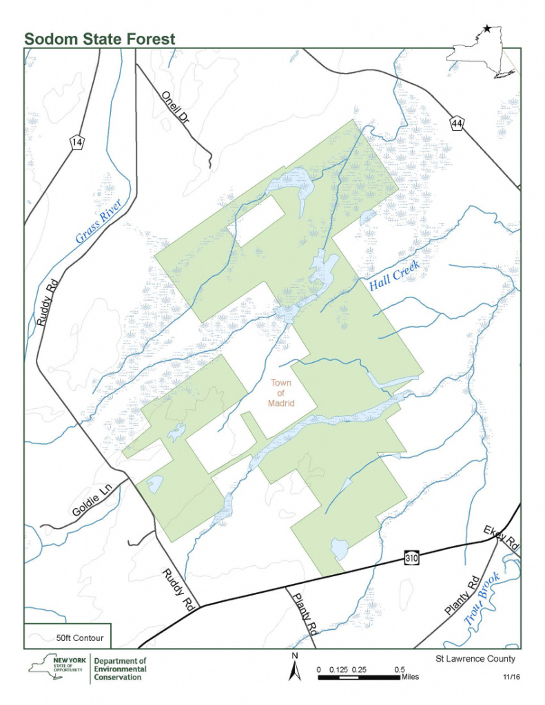 Sodom State Forest Map - Nys Dept. Of Environmental Conservation with New York State Forests Map