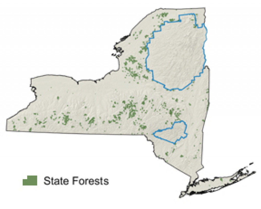 State Forests - Nys Dept. Of Environmental Conservation intended for New York State Forests Map