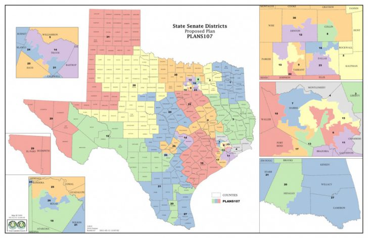 Texas State House District Map