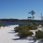 Topsail Hill Preserve Hiking Trails | Florida Hikes! Pertaining To Charlotte Harbor Preserve State Park Trail Map