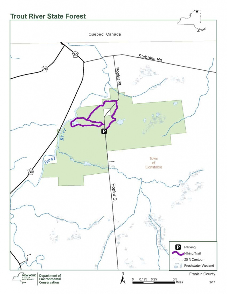 Trout River State Forest Map - Nys Dept. Of Environmental Conservation for New York State Forests Map
