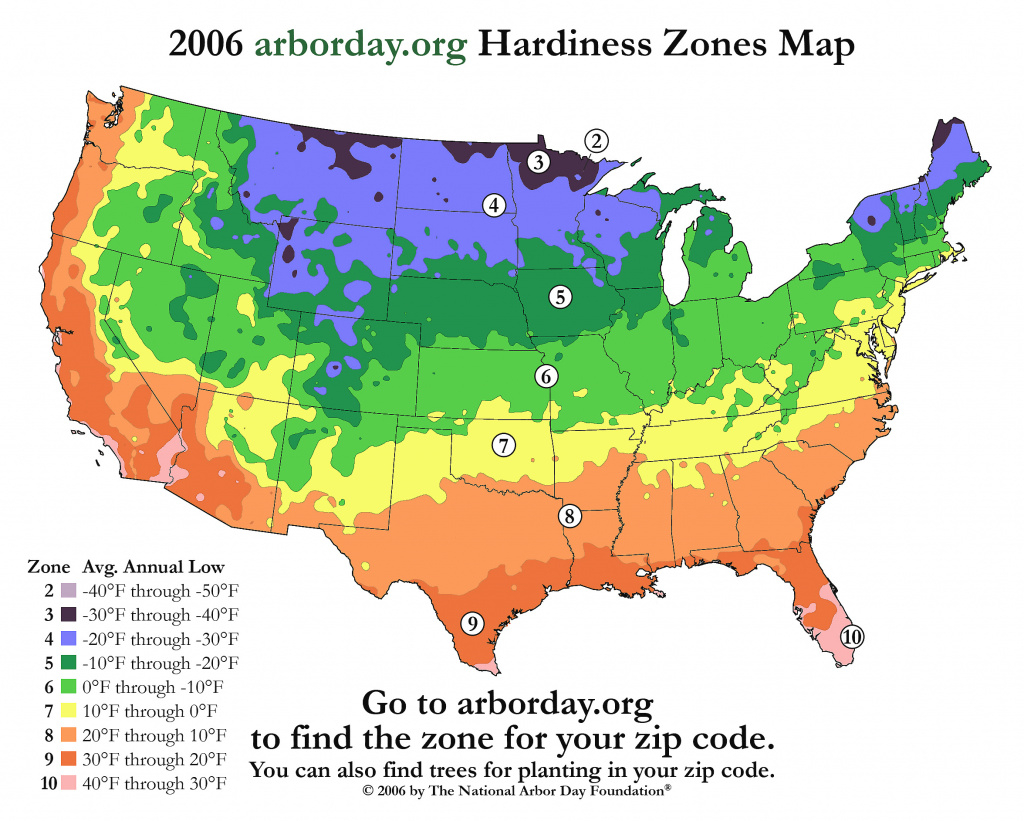 Us Bamboo Hardiness Zones Map And Chart with regard to Map Of Planting Zones In United States