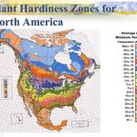 Usda Plant Hardiness Zone Map. Shows The Lowest Temperatures That In Map Of Planting Zones In United States
