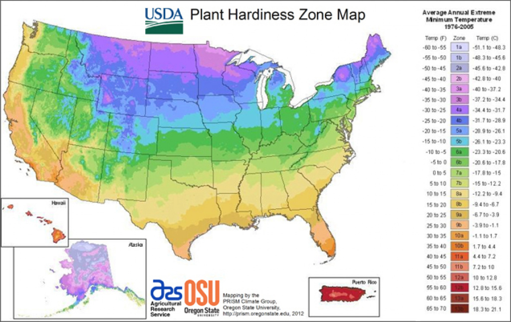 Usda Plant Hardiness Zone Map with regard to Map Of Planting Zones In United States
