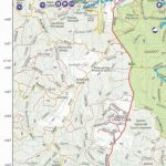 Wombat State Forest Four Wheel Drive 4Wd Map Touring Guide Throughout Free Wombat State Forest Map
